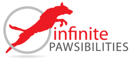 Infinite Pawsibilities